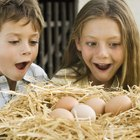Cómo hacer huevos de dinosaurio con niños de edad preescolar