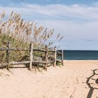 Beaches Nearest to Williamsburg, Virginia