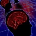 Dieta para estimular el funcionamiento de la glándula pituitaria