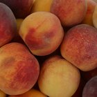 How to Prepare Peaches to Make Peach Pie