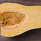 How to Cook Banana Squash in the Oven