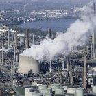Los efectos de la contaminación ambiental en animales para niños