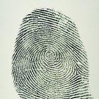 Tipos de patrones en la identificación por huellas dactilares