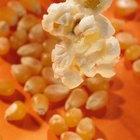 Cuántas calorías hay en 1/4 de taza de palomitas de maíz sin explotar