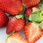 Síntomas de alergia a las fresas