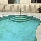 Swimming Pool Algae Problems