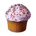 What Causes Cupcakes to Be Dry?