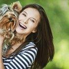 Beneficios a la salud asociados con tener mascotas