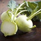 How to Eat Kohlrabi
