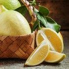 Homemade Natural Pore Reducer with Egg White, Vinegar & Lemon