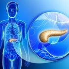 ¿Cuál es la función del páncreas?