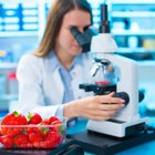 Qué es la dieta genética: cuando los genes dictan lo que debes comer