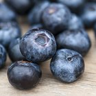 Cook Down Fresh Blueberries
