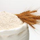 Keep Flour for Long-Term Storage