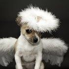 Cómo hacer una aureola de ángel