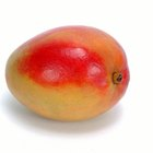 How to Speed Up the Ripening Process for Mangos