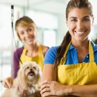 Average Salary of a Pet Groomer