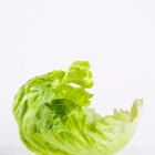 How to Cook Iceberg Lettuce