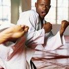 ¿Cuál estilo de lucha se adapta mejor a tu personalidad?