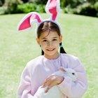 Cómo hacer una correa para conejo