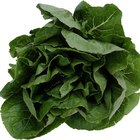 How to Dry Spinach
