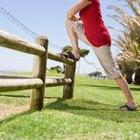 Cómo realizar ejercicios para la espalda luego de una cirugía de fusión espinal