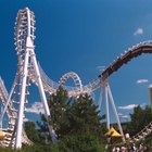 What Environmental Problems Come with Making a Theme Park?