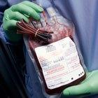 Alimentos para comer antes de dar sangre