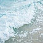 ¿Qué tipo de ondas transmiten energía pero no materia?
