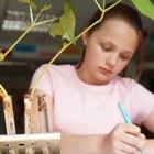 ¿Cuáles son las variables dependientes e independientes en la ciencia para niños?