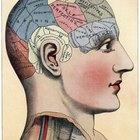 Neurotransmisores que cumplen un rol importante en la memoria
