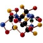 Cuáles son las biomoléculas principales