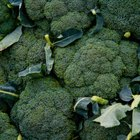Vegetables That Are Considered to Be Roughage