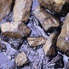 Maneras científicas de separar el petroleo del agua