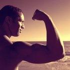 Qué sucede durante la flexión del bíceps (biceps curl)