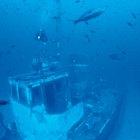 ¿Cuáles son las causas de los naufragios a lo largo de la historia?
