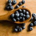 ¿Pueden ciertos alimentos aumentar el metabolismo?