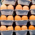 Cómo hacer que un huevo sobreviva a una caída de 6 metros