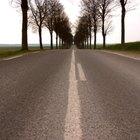 Los efectos adversos de la construcción de carreteras en el medio ambiente