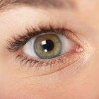 Cómo tapar con maquillaje moretones oscuros o un ojo negro lastimado