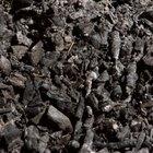 ¿Cuales son los peligros del elemento carbono?