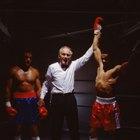Boxing Judge Salaries
