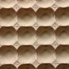 Manualidades de hormigas con cajas de huevos