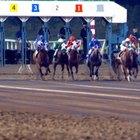 Cómo calcular cifras de velocidad en carreras de caballos