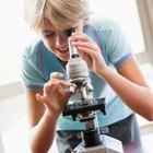 Uso del microscopio compuesto en el área de la Biología