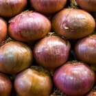 How to Julienne Onions