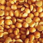 ¿Aumentas de peso al ingerir soja?