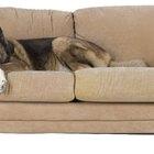 La diferencia entre los sofás de tela y de microfibra