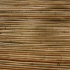 How to Bend Bamboo for a Walking Cane