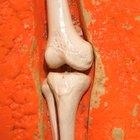 Dolor de articulaciones y deficiencia de vitaminas